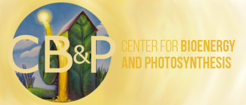 Center for Bioenergy & Photosynthesis