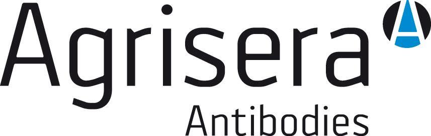 Agrisera Antibodies