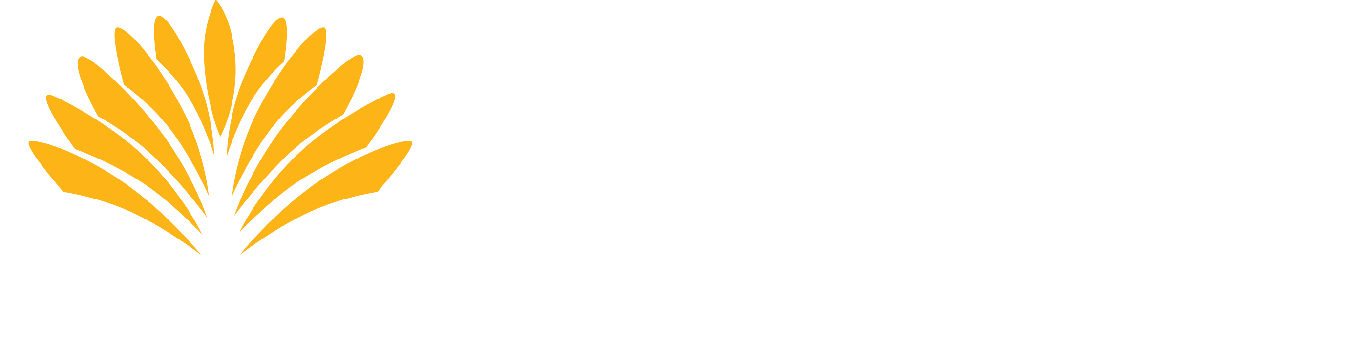 Association of Recovery in Higher Education: ARHE